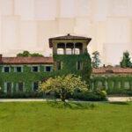 Imbersago, Di nobili parole, 100x200 cm